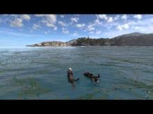 Trailer: Zabydlená Země