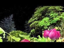 Trailer k filmu Země, Měsíc a Slunce